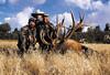 New Mexico Elk Hunt 68