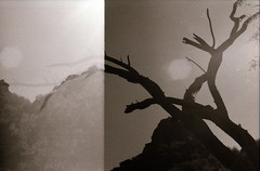IMG_0008 (Joseph Maddon) Tags: arizona bw southwest film contrast analog 35mm lomo lomography desert doubleexposure grain delta double multipleexposure multiple hp5 barren ilford
