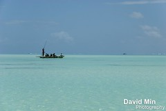 Zanzibar, Tanzania - Tropical Paradise (GlobeTrotter 2000) Tags: travel sea sun kite beach water tanzania island boat paradise crystal visit surfing explore tropical paje toursim jambiani