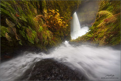 Merciless Descent (www.jessfindlay.com) Tags: usa oregon forest waterfall rainforest unitedstatesofamerica columbiarivergorge eaglecreek cascademountains cascadelocks