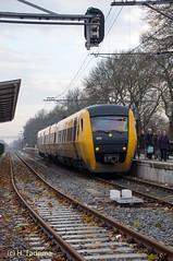 DSC06982.jpg (henk_tadema) Tags: nederland tiel gelderland buffel syntus