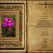 Lectura Libro de Eclesiástico 48,1-4 9-11  Obra Padre Cotallo