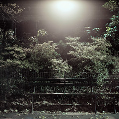 Bench and Street Light. Central Park, NYC (jordanguile) Tags: nyc newyork night bench photography centralpark hasselblad 59thstreet carlzeiss 220film jordanguile