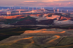 Palouse Windmills (Ryan McGinty) Tags: winter sunset landscape washington windmills farmland fields windfarm palouse whitmancounty steptoebutte ryanmcginty