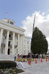12-3-12 2012 State Christmas Tree