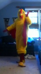 Chicken suit 63 (ChickenJay) Tags: bird chicken yellow happy zoo costume transformation mask wing beak suit talon hen birdbrain toony