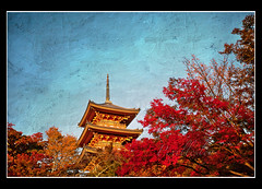 The Temples (pixellesley) Tags: autumn trees sky colour texture japan temple kyoto maples kiyomizudera clearblue memoriesbook tatot magicunicornverybest magicunicornmasterpiece