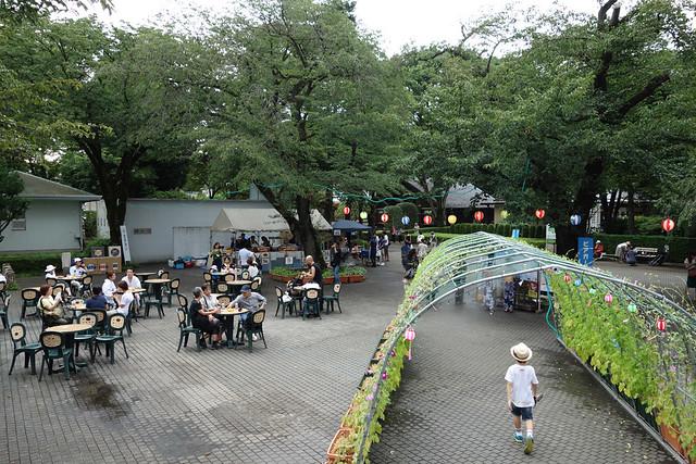 ビジターセンターを抜けて、江戸東京たてもの園内に入りました。|たてもの園 下町夕涼み
