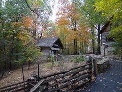 DSC03546 (jrucker94) Tags: autumn fall amusementpark branson silverdollarcity