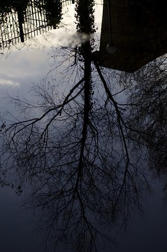 Mirrored 1 ©  Still ePsiLoN