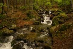 Bubbling stream (gennadiy.troitskiy) Tags:    bg