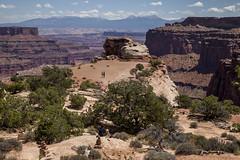 Shafer Canyon overlook (democritus21) Tags: canyonlandsnationalpark islandinthesky shafercanyonoverlook shafercanyon rockformations utah geology sandstone canyonlands ut usa