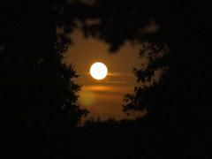 Miracle de la nuit (2) (moniquefouchereau) Tags: pleine lune soir ciel