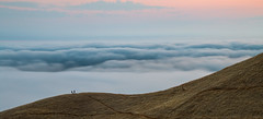 enjoying the fog roll like waves (Sribha Jain) Tags: clouds fog roll rolling tamalpais eastpeak ridgecrest california sunset rollinghills escaype