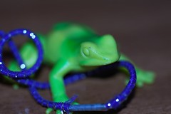 #10 (f.tyrrell717) Tags: one object day 365 frog tangled blue
