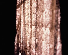 Soft Energy (YUKIHAL) Tags: pentax67 smc p67 90mm f28 rvp100 fujifilm film velvia100 120 bokeh mediumformat analog 67 6x7 pentax