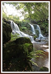 Hidden beauty. (stu.bloggs..Dont do Sundays) Tags: water waterfalls waterfall waterarkfalls beckhole muresk river landscape rocks rockyoutcrops rocky flow longexposure canon northyorkshire northyorksmoors summer august 2016 moss trees foliage view ferns
