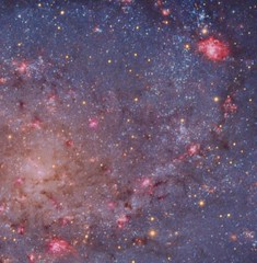 A closer look at M33 (Terry Hancock www.downunderobservatory.com) Tags: camera sky monochrome night stars photography mono pier back backyard fotografie photos thomas space shed science images astro apo m observatory telescope ngc598 galaxy astrophotography m33 astronomy imaging triangulum pinwheel ccd universe cosmos hii constellation paramount luminance emission lodestar teleskop astronomie byo refractor nebulae deepsky f55 ngc604 ngc595 astrograph autoguider starlightxpress Astrometrydotnet:status=solved ic142 b342 Astrometrydotnet:version=14400 tmb92ss mks4000 gt1100s ic143 qhy9m Astrometrydotnet:id=alpha20121131446890