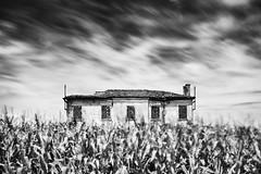 house in the field #4 (nicola tramarin) Tags: longexposure italy house casa italia delta deserted veneto rovigo abbandonata lungaesposizione polesine nicolatramarin