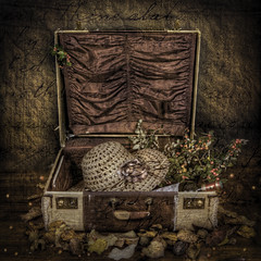 All packed up for Autumn (janetmeehan) Tags: autumn ireland stilllife colour texture hat leaves vintage berry wine aged suitcase hdr tabletop autumnscene stilllifephotography vintagesuitcase tabletopphotography