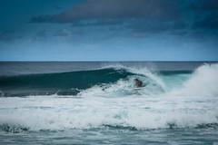 BW7A0127.jpg (zabomysicka) Tags: hawaii oahu surfing northshore pipeline ehukaibeachpark