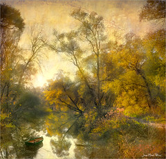 Impression (Jean-Michel Priaux) Tags: autumn trees france tree nature forest photoshop automne river painting landscape poetic reflect alsace paysage hdr savage ried diebolsheim priaux rhinau mygearandme flickrstruereflectionlevel1 rememberthatmomentlevel1 flickrsfinestimages1
