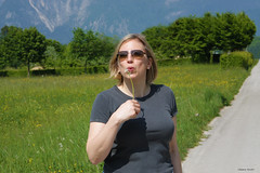 In the countryside (hachiko_it) Tags: road flowers trees people italy woman mountain mountains flower green nature girl grass sunglasses yellow lady countryside blowing dandelion hedge harmony blonde dolomites belluno dolomiti veneto bellunesi sedico chiarasirotti