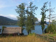 CIMG0623 (boaski) Tags: travel lake tourism nature austria see sterreich europe hiking natur tourist wandern wolfgangsee autriche sterrike salzkammergut lakewoilfgang