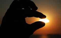 caught ! (Martin.Matyas) Tags: ocean italien italy sun beach yellow strand canon finger sommer landschaft sonne sonnenaufgang sonnenschein ozean naturesfinest summersun schön spätsommer canonefs1785isusm naturschauspiel eos7d naturescreations fingerfertigkeit