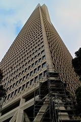 infinite building (ry3bee) Tags: sanfrancisco canon skyscrapers pyramid financialdistrict jacksonsquare transamerica transamericapyramid transamericabuilding efm eosm