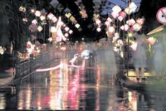 Hoi An lanterns and reflections on bridge (Karl Muller) Tags: reflection rain bike bicycle night river lights asia market vietnam hoian japanesebridge lanters