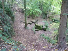 'The Snake Pit' Hopwas Woods,Tamworth. (Man Of Green) Tags: woods staffordshire tamworth hopwas thesnakepit hopwaswoods tamworthstaffordshire