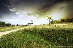 Crossing / Cruzando (Claudio.Ar) Tags: road railroad sky santafe color argentina landscape nikon crossing cross fields topf100 pampa d7000 claudioar claudiomufarrege nikkor18105mmf3556gedafsvrdx