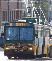 King County Metro Breda Trolley 4202 (zargoman) Tags: seattle travel bus electric trolley transportation transit breda articulated rebuilt kingcountymetro dualmode trackless adpb350 kiepeelektrik tunnelbus
