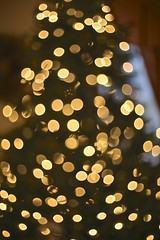 ~Happy Bokeh Christmas~ (cheryl c.) Tags: enjoy makinggifts ilovechristmas ilovebokeh bokehchristmastree blinkagain myheadfeelslikethat evenwithallthework listeningtojohntravoltaandolivianewtonjohn