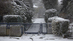 entrance, snowy (glasseyes view) Tags: trees winter snow grid closed snowy entrance driveway hedge gateway firstsnow lattice winterreise glasseyesview