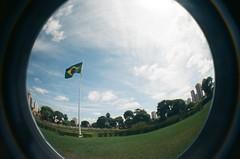 #344 ([ iany trisuzzi ]) Tags: brazil film brasil analog 35mm lomography flag toycamera fisheye fisheye2 project365 365days