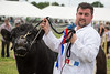 213/366 Winning Bull - 366 Project 2 - 2016 (dorsetpeach) Tags: yeovilshow show agriculturalshow yeovil somerset england event bull cattle 366project aphotoadayforayear 365 366 2016 second365project