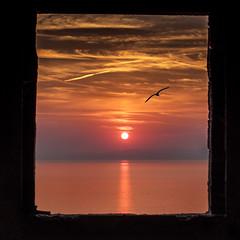 Il gabbiano (Enrico Cusinatti) Tags: manipulation sunset sun sea enricocusinatti sky clouds rosso window liguria italy progettoartwork