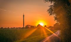 Sunset (Monika ukauskyt) Tags: sunset sun tower road path grass tree shine sky plane littleclouds germany rahden