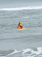 BGA_0443 (G3 Photography) Tags: vinayagar chadurthi marina nikon chenai chennai cultur