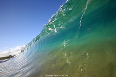 IMG_0523 copy (Aaron Lynton) Tags: makena big beach wave waves barrel bigbeach lyntonproductions canon 7d 580exii hawaii