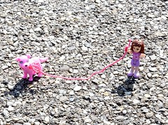 ...My dog and me... (cegefoto) Tags: speelgoed toys hond dog lego friends schaduw shadow fietspad bikepath