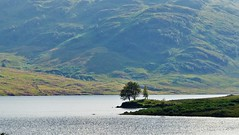 Loch Arklet (brightondj - getting the most from a cheap compact) Tags: thirdwalk scotlands loch water landscape trossachs locharklet lonetree