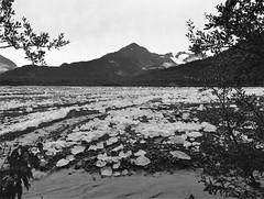 Exit Glacier Outwash (cobbu2) Tags: bronica etr 75mm f28 mc zenzanon kodak 320txp txp
