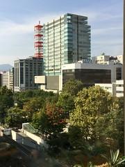 Start of Fall Color in Odori Park (sjrankin) Tags: 27september2016 edited sapporo hokkaido japan odoripark odorikoen trees buildings downtown fallcolor teine mountteine antennas