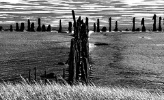 Underwater structures (Fearghl Nessbank) Tags: nikon d700 blackwhite monochrome bw underwaterstructures blackwhitephotos mono shore