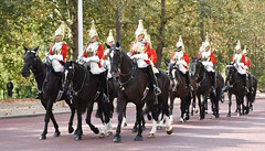 Household Cavalry (littlestschnauzer) Tags: royal soldiers parade parading buckingham palace 2016 uniform horses summer mall mounted horseback british military london horse guard household cavalry