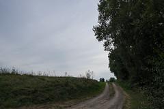DSCF3155 (kuzdra) Tags: anjou automne autumn fujifilmxt10 xt10 fujifilm france valdeloire франция долиналуары анжу осень
