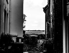 (Nico_1962) Tags: leica m8 rangefinder nederland gelderland overijssel hattem bw zwartwit leicam primelens summicron summicron50mm thenetherlands manualfocus